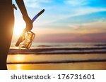 beach adventure  silhouette of... | Shutterstock . vector #176731601