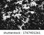Black And White Landscape ...