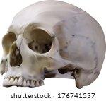 illustration with skull...   Shutterstock .eps vector #176741537