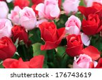 photo of red and pink roses...   Shutterstock . vector #176743619