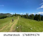 St. Wolfgang, Austria - June 27 2020: Hikers moving on an alpine trail in the Schafberg region of Salzkammergut - stock photo