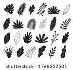 set of silhouette leaves  herbs ...   Shutterstock .eps vector #1768352501