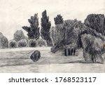 Pencil Drawn Landscape With A...