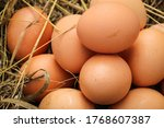 Natural Organic Chicken Eggs...