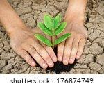 hands holding tree growing on... | Shutterstock . vector #176874749