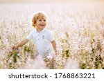 Happy Little Boy With Blonde...