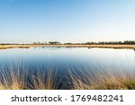 The Kalmthout Heath Is One Of...
