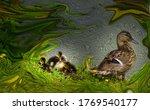 Female Mallard Duck And Chicks...