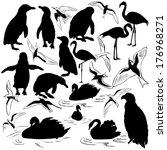 set of birds | Shutterstock .eps vector #176968271