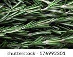 seasoning fresh rosemary | Shutterstock . vector #176992301