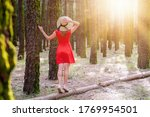 woman in red dress and hat... | Shutterstock . vector #1769954501