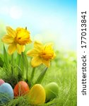 Easter Eggs And Daffodil Flowe...