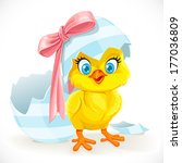 cute baby chick just hatched... | Shutterstock .eps vector #177036809