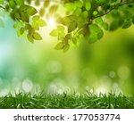 eco nature   green and blue... | Shutterstock . vector #177053774