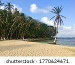 Scenic View On Isla Mamey...