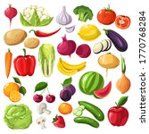 vegetables and fruits  beetroot ... | Shutterstock .eps vector #1770768284