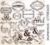 vector set of calligraphic... | Shutterstock .eps vector #177081635