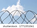 Barbed Wire On Background Of...