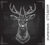 vector   deer   hand draw  ... | Shutterstock .eps vector #177136559