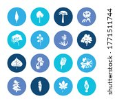 floral icon set and siren... | Shutterstock .eps vector #1771511744