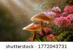 Magical Fantasy Mushrooms In...