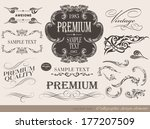 calligraphic design elements... | Shutterstock . vector #177207509