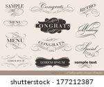 calligraphic design elements | Shutterstock . vector #177212387