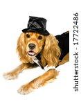 groom | Shutterstock . vector #17722486