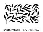 brush branches with long leaves ...   Shutterstock .eps vector #1772438267