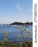 Bordeaux Harbour, Guernsey Channel Islands