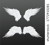templates set of white feathers ...   Shutterstock .eps vector #1772910281