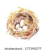 Straw Birds Nest With Eggs  ...
