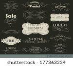 calligraphic design elements... | Shutterstock .eps vector #177363224