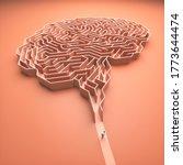 Brain Shaped Maze. Conceptual...