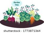 vegetables. garden. stock...   Shutterstock .eps vector #1773871364