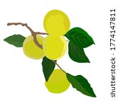 Vector Stock Illustration Of A...