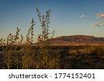 Sunset Lit Mountain Backroad...