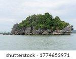 view of koh nui nok  nakhon si... | Shutterstock . vector #1774653971