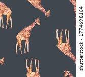 giraffe watercolor seamless...   Shutterstock . vector #1774698164