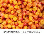 Close Up Of Cloudberry As A...