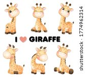 Cute Little Giraffe Poses With...