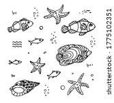 Oceanic And Sea Fish  Starfish  ...