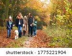 Multi Generation Family Walking ...