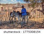 African Man Petting His Donkey...