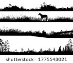 realistic black and white...   Shutterstock .eps vector #1775543021