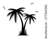 vector illustration of palm... | Shutterstock .eps vector #177563381