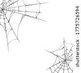 halloween realistic spiderweb... | Shutterstock .eps vector #1775726594