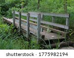 Old Wooden Bridge Across Fores...