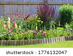 Various Colourful Flowers In A...