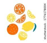 bright vector illustration of... | Shutterstock .eps vector #1776178004